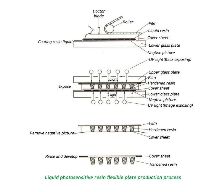 Flexo-plate-making-process-flow-chart